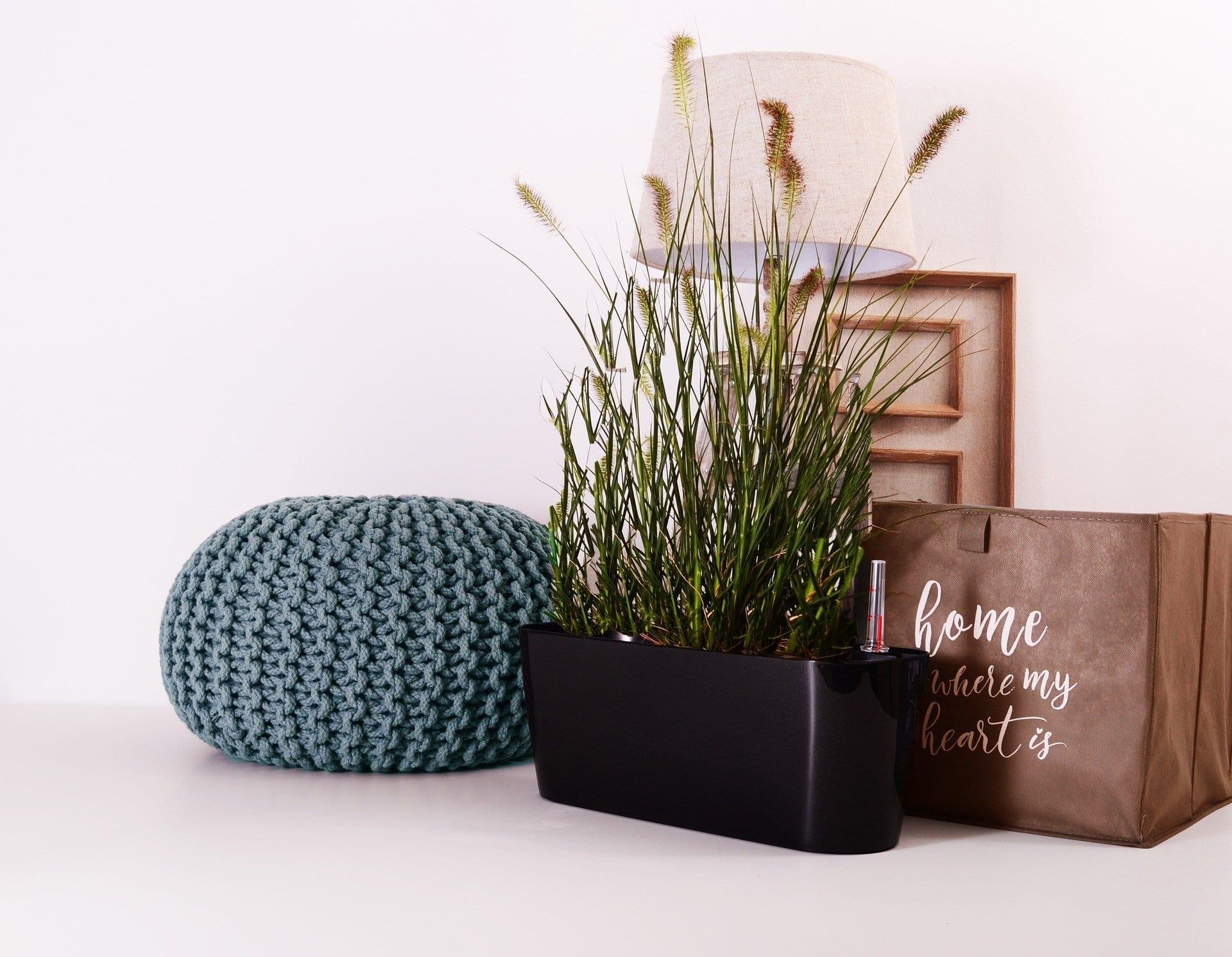 indoor grow room
