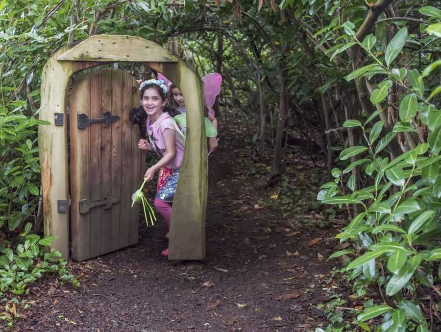 Galgorm Castle Fairy Trail